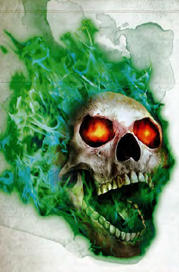 Image result for flaming skull d&d